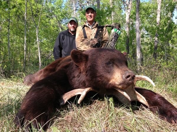 Here's Another Agassiz Outfitters Manitoba Record Book Bear