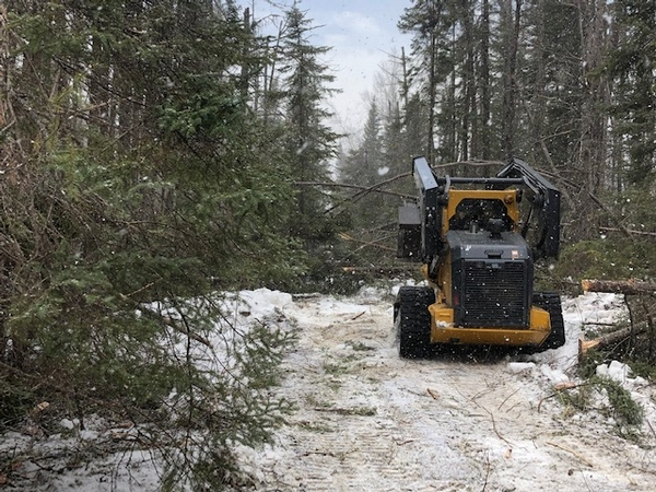 Trail Work in Progess