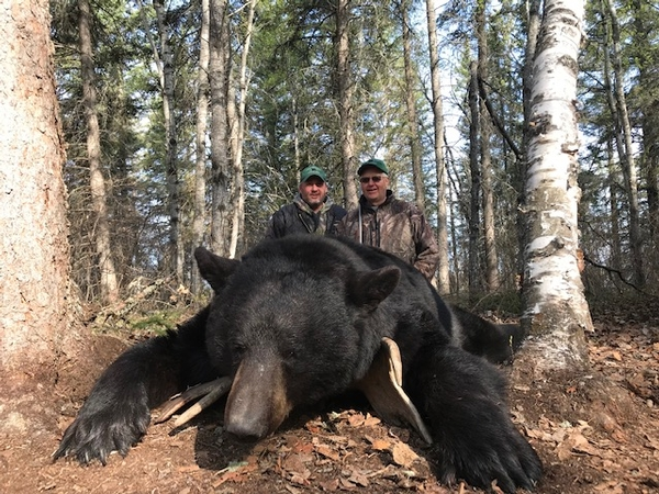 Another Record Book Black Bear