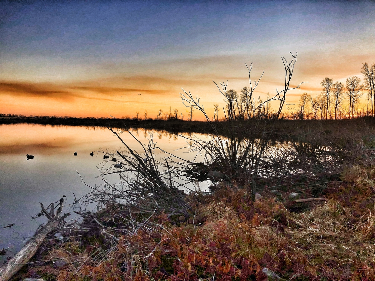 The Waterfowl Hunting Lodge Manitoba