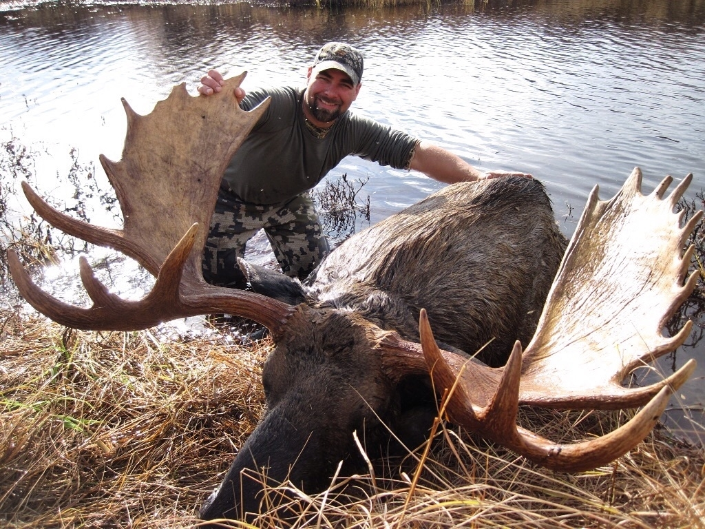 Moose Hunting Packages